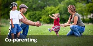 Co-parenting Link