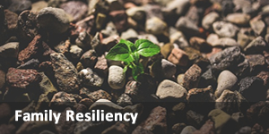 link to family resiliency site